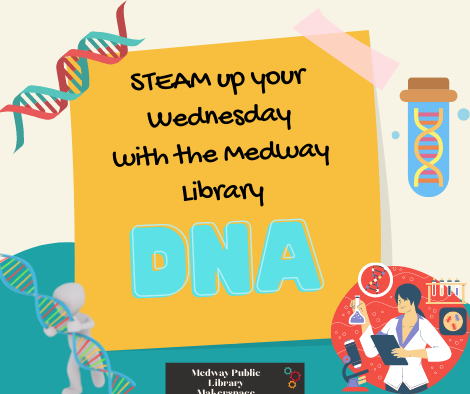 STEAM up your Wednesday with the Medway Library. DNA. Medway Public Library Makerspace. Picture of a scientist holding a beaker. Pictures of DNA strands
