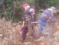 Picture of Volunteers