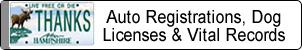 Auto Registrations, Dog Licenses & Vital Records