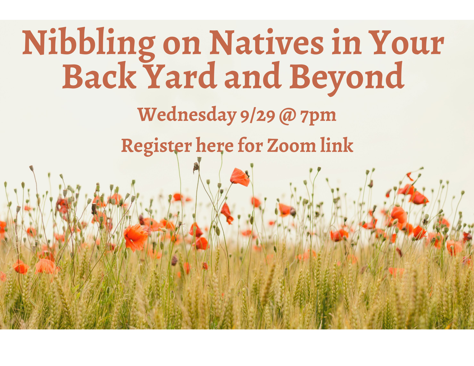 Nibbling on Natives in Your Back Yard 9/29 @ 7 pm click here to register.