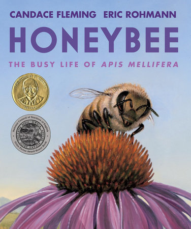 Cover for Honeybee: The Busy Life of Apis Mellifera